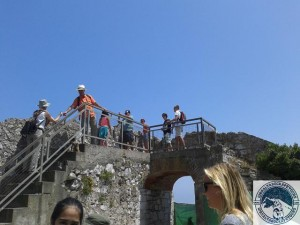 Gibraltar-Rock-Ape-Tours-789