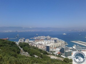 Gibraltar-Rock-Ape-Tours-794