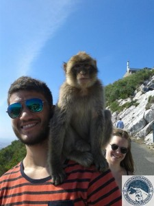 Gibraltar-Rock-Ape-Tours-827