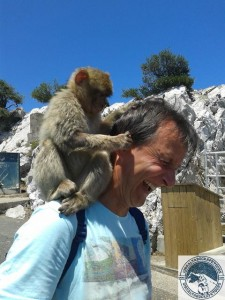 Gibraltar-Rock-Ape-Tours-839