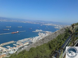 Gibraltar-Rock-Ape-Tours-960